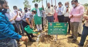 यमुना प्राधिकरण ने वृहद वृक्षारोपण किया,10000 पौधे स्थानीय निवासियों को  निशुल्क वितरित किए